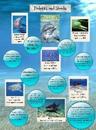 Dolphins and Sharks ~ Ashleigh's thumbnail