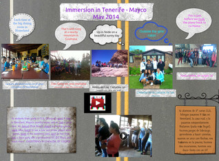 Mayco Immersion 2014