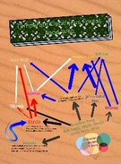 Temperate Deciduous Forest Food Web's thumbnail