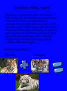 WHite TIger Project pg 3's thumbnail