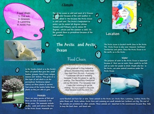 The Arctic and Arctic Ocean