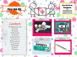 3010 First aid kit