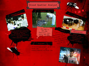 Blood Spatter Analyst's thumbnail