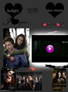 twilight vs new moon's thumbnail