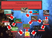Dominique and Claudia Freshwater Biome's thumbnail