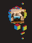 dog wit glasses's thumbnail