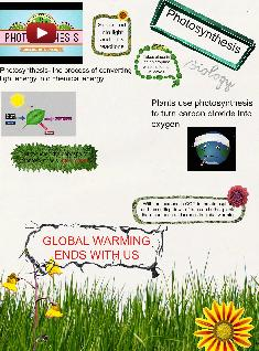 Photosynthesis and Global Warming