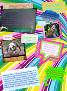 BULLDOGS R SORT OF KOOL DOGS!!!!:)'s thumbnail