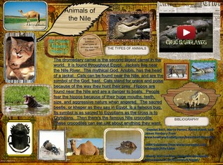 Animals of the nile