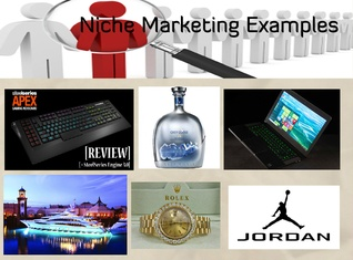 Niche Marketing Examples