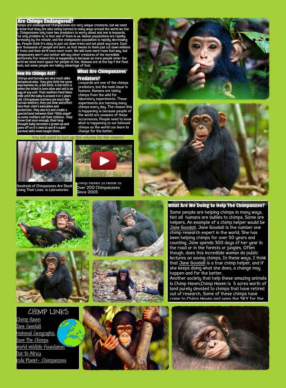[2015] Aly More (Schepp 13-14): Save The Chimps!