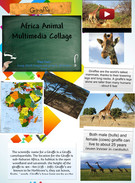 Africa Animal Multimedia Collage's thumbnail