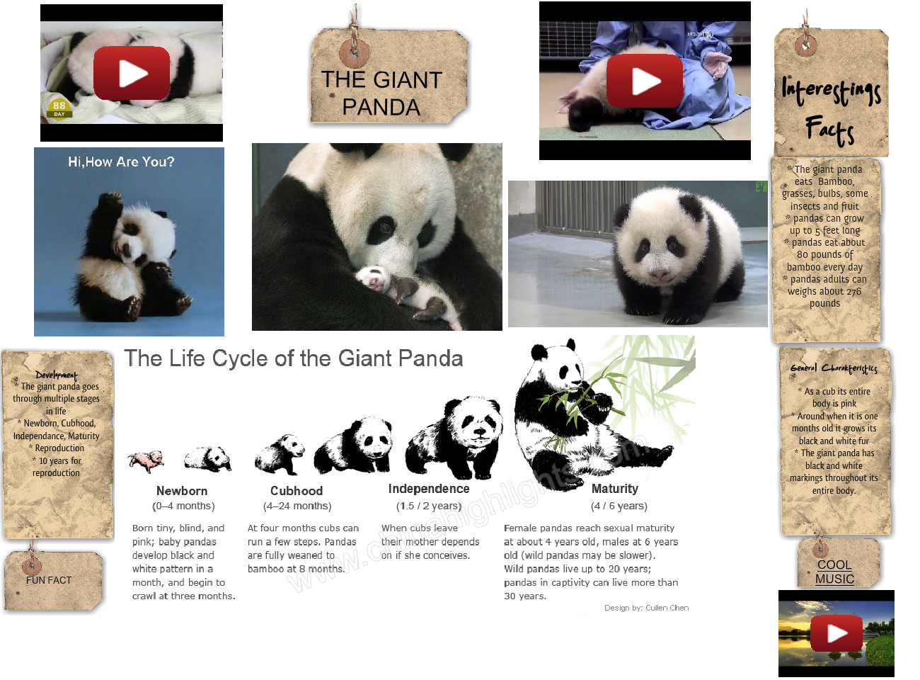[2015] Anthony Mendez (3rd Earth Science 2015): The Giant Panda