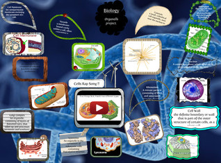 CELL ORGANELLS PROJECT