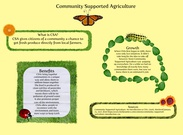 Community Supported Agriculture Caitlyn Blount's thumbnail
