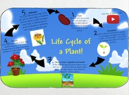 Life Cycle of a Plant's thumbnail