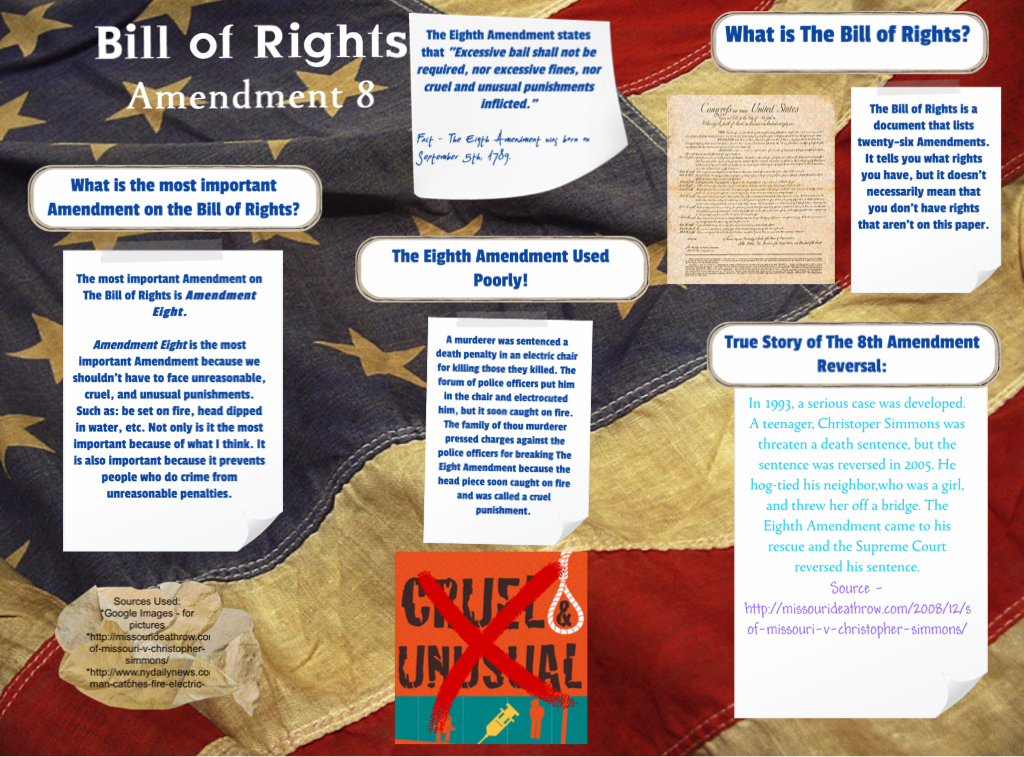 [2015] Selina Yim-Chun (Social Studies): The Bill of Rights