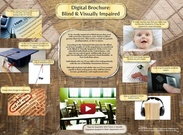 Digital Brochure: Blind and Visually Imparied's thumbnail