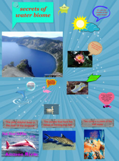 the water biome