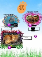 Mrs. Olivers' Class Animal Research's thumbnail