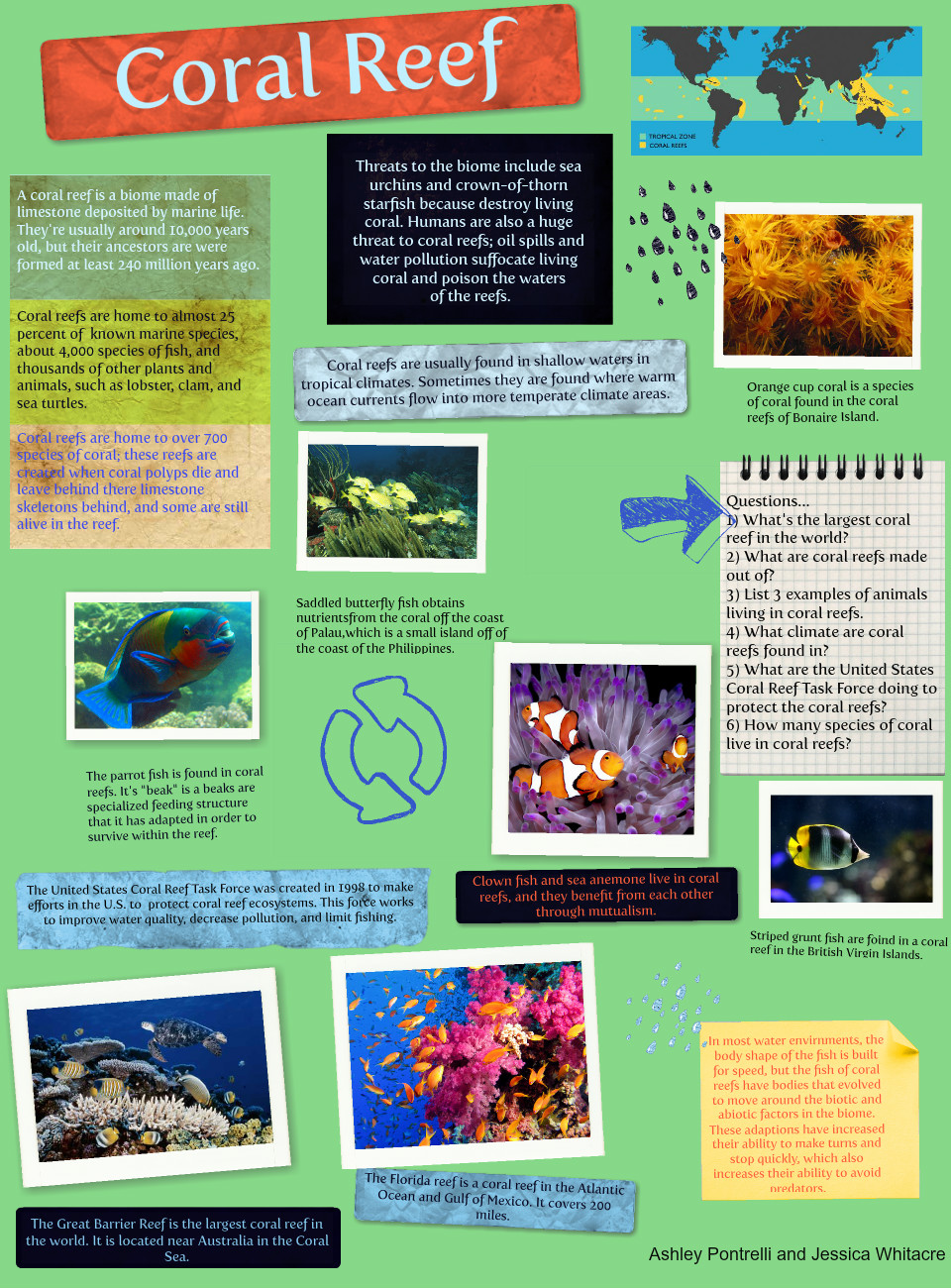 Coral Reefs: coral reefs | Glogster EDU - Interactive