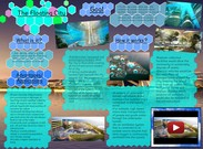 The Floating City's thumbnail