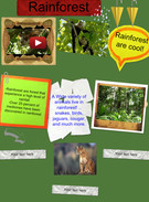 rainforest's thumbnail