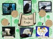 The Bald Eagle thumbnail