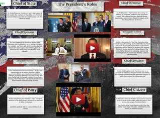 The President´s Roles